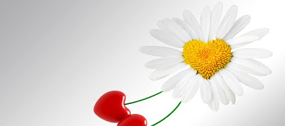 Citation Sur L'amour Pour L'anniversaire De Mariage